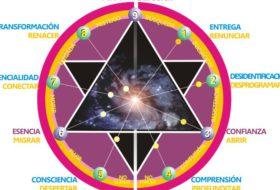 ESCUELA CONSCIENTE® (2da parte): explorar lo interno desde el despertar de la consciencia